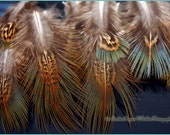 Pheasant Feathers Craft Supplies Brown Feathers Natural Bird Feathers Fringe Fly Fishing Small Craft Feathers Embellishments - 15