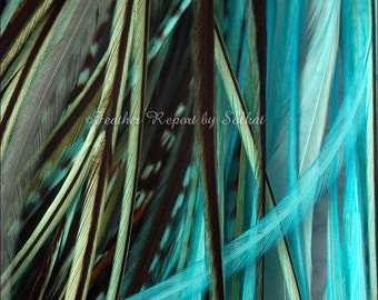 Turquoise Hair Feathers 10 Blue Feather Extensions Hair Accessories Real Rooster Feathers Hair Products
