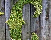 Large Moss Covered Letter C - Rustic Wedding - Monogram - Home Decor -  ANY LETTER