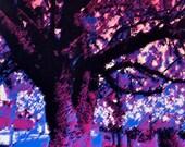Memorial Park Digital Print