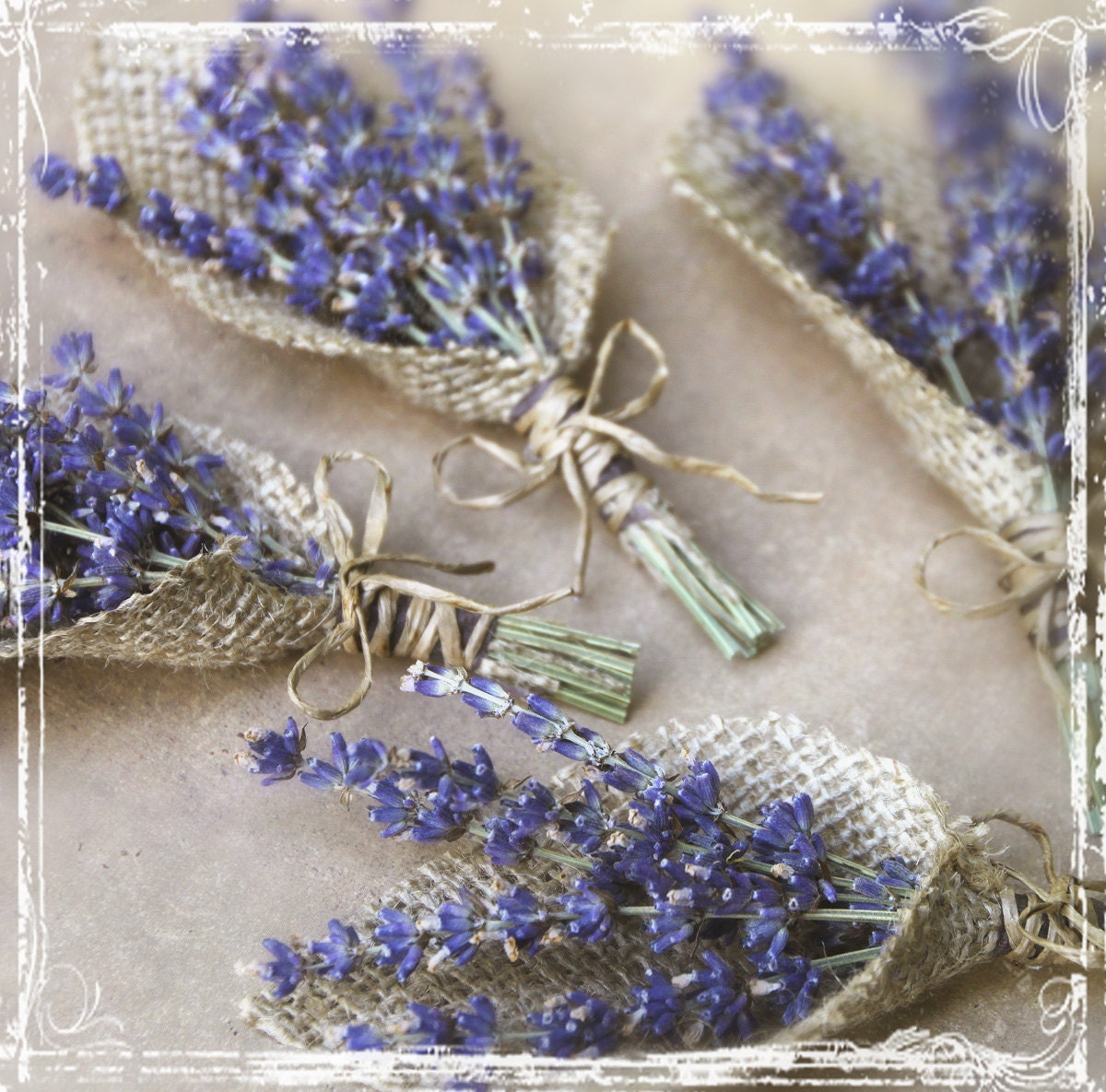 lavender and burlap boutonniere herb weddings european