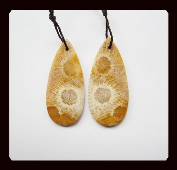 Indonesian Fossil Coral Teardrop Earring Bead,35x16x3mm,5.55g