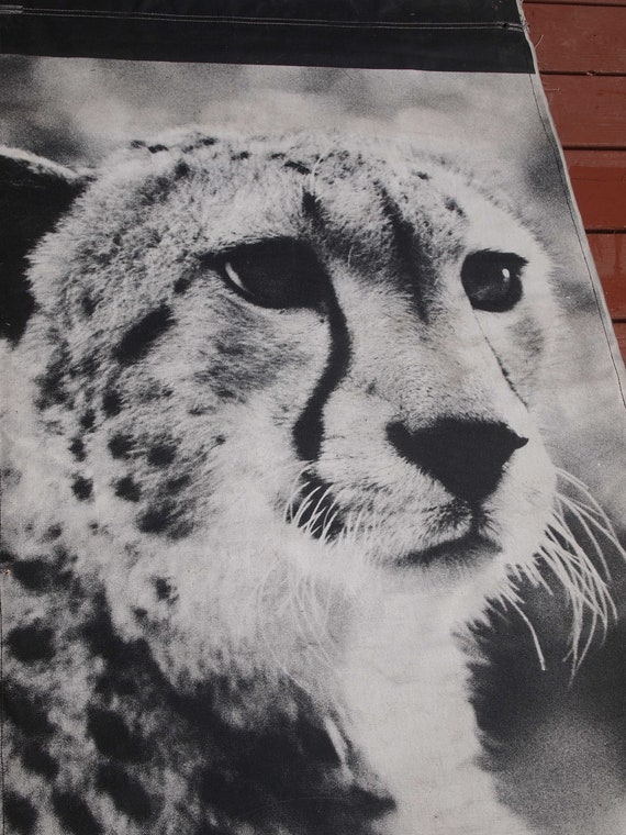 Lincoln Park Zoo Cheetah Advertisement Banner - FREE SHIPPING