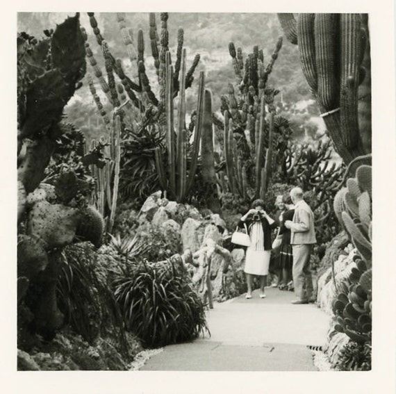 """Vintage Photo """"Travels to Monte Carlo"""", Photography, Paper Ephemera, Snapshot, Old Photo, Collectibles - 0020"""