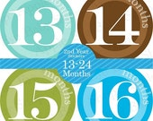 13 to 24 Baby Monthly Stickers BABY RICKY 2nd Year (Blue.Green.Brown.Turquoise.Size 4 inches) Create Great Memories in your baby Album