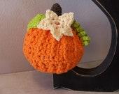 Crochet Pumpkin Hat-Fall Decoration-Pumpkin Beanie-Newborn to Adult Sizes