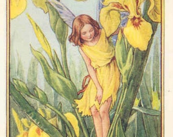 Iris Fairy - Cross stitch pattern pdf format
