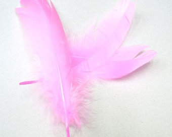10-20cm Natural Feather Pink Lot of 250pieces - 4715  - Wholesale Feathers Bulk Accessory