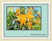 Glorious Florida Flame Azaleas - Personalized Note Cards (10 Folded)
