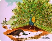 """1966 """"Peacocks"""" Teaching Pictures, No. 11 of 12 in the Zoo Series, 11x14 Poster"""