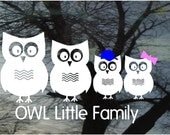 "Vinyl Car Window Decal 5h x 9w - Family of 4 owls & wording ""OWL Little Family""...PaPa, MaMa, two little ones - FREE Pink Bows-Blue Caps"