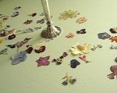 Wedding Decor Wedding Flowers Table Decor Real Pressed Flower Wedding CONFETTI