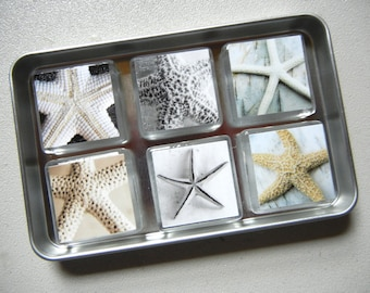 Magnets, Set of 6 Starfish Images