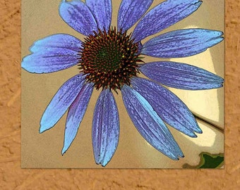"""Blue echinacea on brown """"paper"""" background, notecard, 4.25""""x5.5"""", blank"""