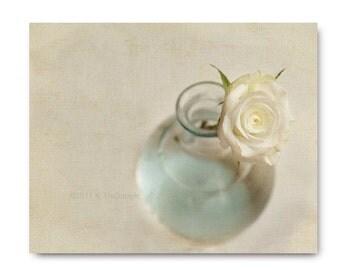Shabby Chic Rose, Flower Print, Pale Blue, Ivory,  Flower Photo home decor winter white creamy soft still life teal dreamy flowers,
