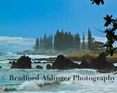 Sunny Day at Hamoa Beach, Maui, Hawaii - Photograph