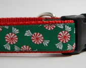 Christmas Dog Collar- Peppermint Candy Red & Green