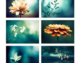 Nature Photo Set, Six 5x7 Photographs, dark teal aqua blue turquoise orange beige flower floral gallery wall photography print set botanical