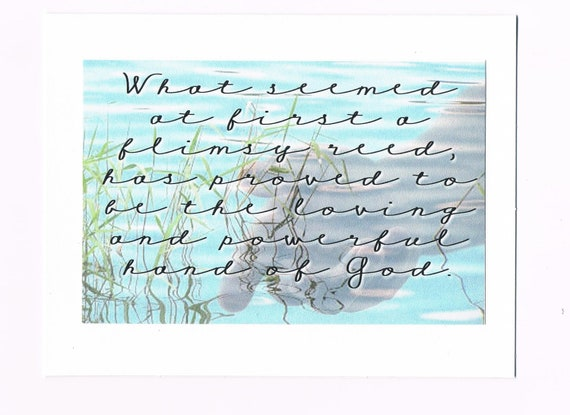 What seemed at first a flimsy reed, has proved to be the loving and powerful hand of God card