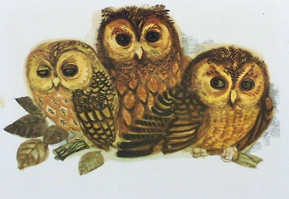 Pair of Vintage Framed Owl Prints from 1972