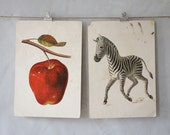 A is for Apple & Z is for Zebra : Extra Large Vintage Alphabet Flash Card