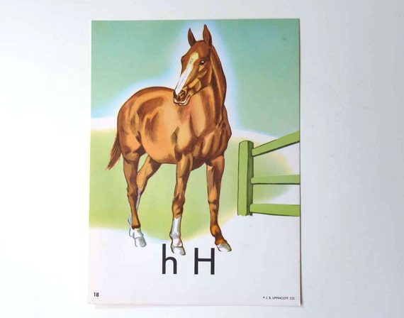 H is for Horse poster, classroom learning aid
