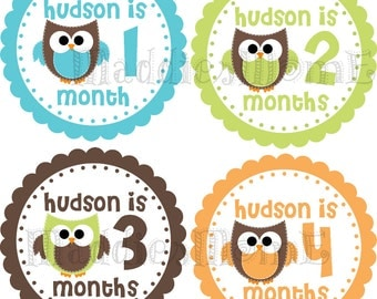 CUSTOM Monthly Baby Boy Stickers, Milestone Stickers, Baby Month Stickers, Monthly Bodysuit Sticker, Monthly Stickers Owls (Hudson)