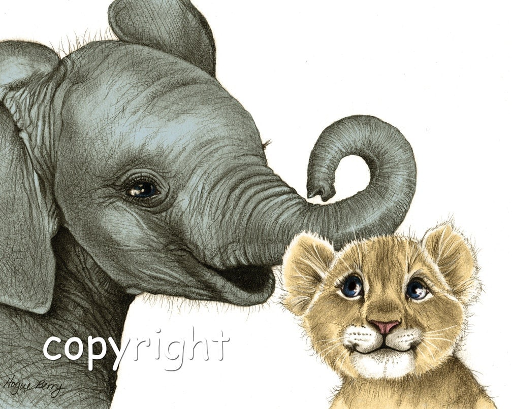 Pencil Drawings Of Baby Elephants Baby elephant baby lion pencilPencil Drawings Of Baby Elephants