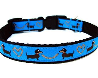 """Dachshund Dog Collar 3/4"""" Blue Dog Collar"""