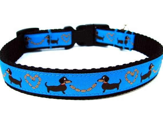 Dachshund collars & harnesses