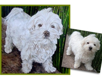 Custom Dog Painting pet portrait maltese art original oil painting great gift 24x24 made to order by Heather Hughes