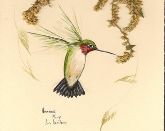 "Hummingbird print 5 x 7 inches ""Hummer"""