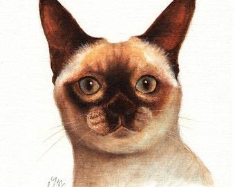 Original Oil CAT Portrait Painting TONKINESE Art On Canvas Kitten Artist Signed