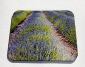 Mouse Pad Lavender Field Landscape Photo Mousepad   READY to SHIP