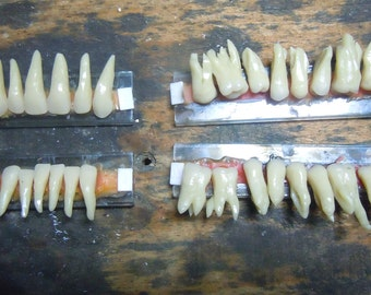 HIGHT QUALITY- COMPLET Dentist Trophy