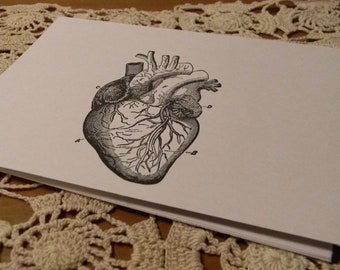Anatomy Human Heart  Blank Note Cards