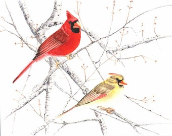 Cardinal pair 8x10 print from original watercolor painting, birds, art,art & collectibles, wall art, home decor, earthspalette