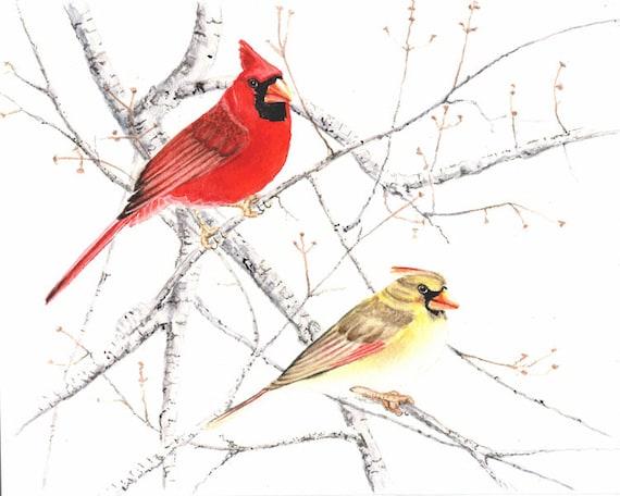 Cardinal pair 8x10 original watercolor painting of wild birds home decor earthspalette