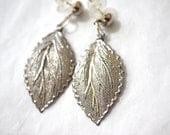 Broad Leaf Silver Earrings