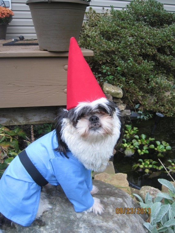 Custom Made Order For Traveling Gnome Dog Halloween Costume