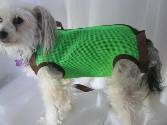 Puppy Purse in  Lime Green Mesh /Chocolate Trim Sz Med