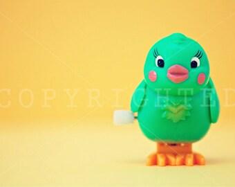 vintage bird (11x16)