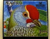 "Northern Mariana Islands ""Fruit Dove"" postage stamp fridge magnet"