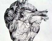 Reserved - Original Illustration - Katie Rose Clausen