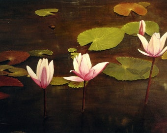 Lotus Pond Greeting Card- 5 cards in pack