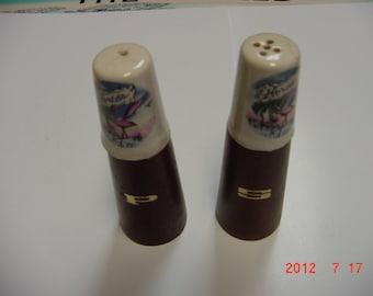 Vintage Florida Salt and Pepper Shakers