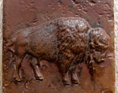 6x6 Accent Tile - Bison / Buffalo - More colors available