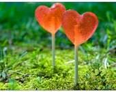 Summer Wedding Favors // 3 Watermelon Sea Salt Lollipops // Sweet & Salty // Fall Wedding Favors // Made to Order