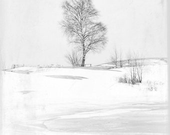 "Winter in Helsinki Finland 11""X14"" photograph."