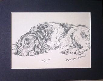 SPRINGER SPANIEL Card and Print OPTION Vintage mounted 1939 Lucy Dawson spaniel lying down dog plate print Unique christmas birthday gift